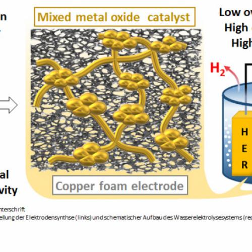 Edelmetall-freier Komposit-Katalaysator für Elektrokatalyse